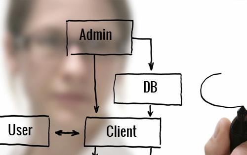Expert Programmers