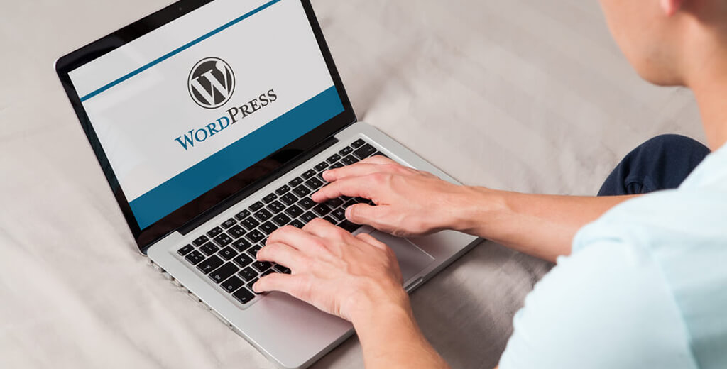 WordPress – the best among CMS